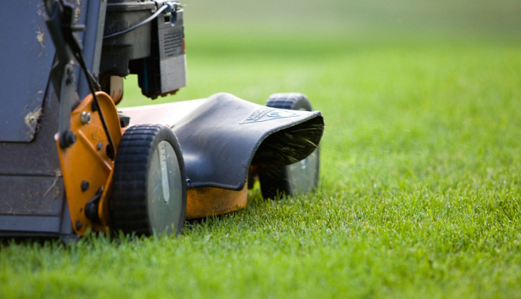 Maintaining your landscaping