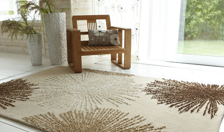 Rugs on living room floor