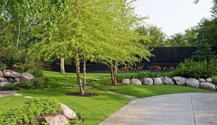 Trees for home landscaping