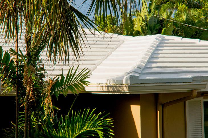 Latex roof sealer