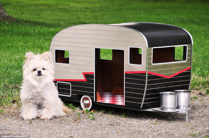 Pet and its mobile home