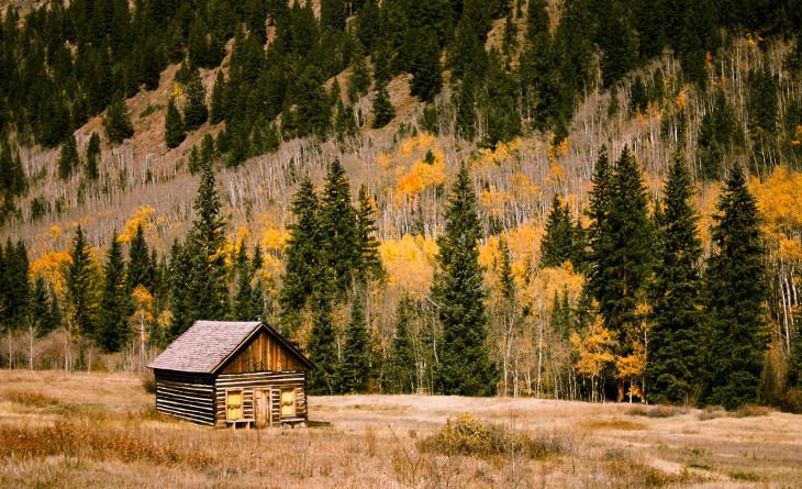 Isolated modular log cabin