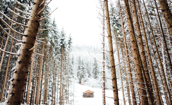 Log cabin during winter