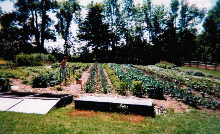 Off grid food garden